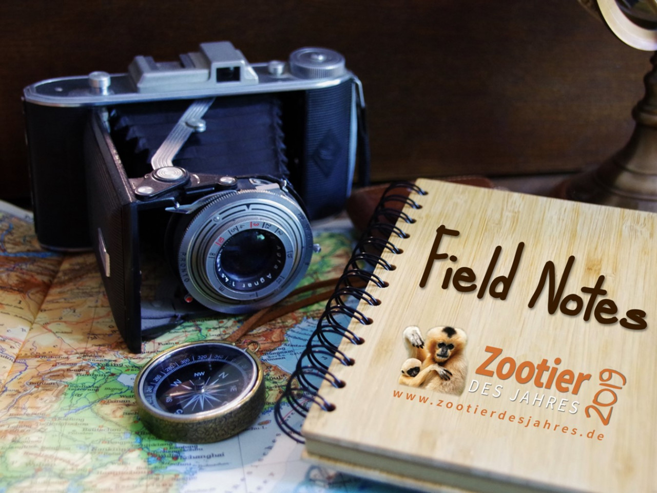 ZdJ 2019 - Fieldnotes: Project Anoulak